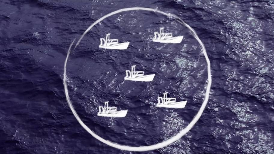 A visualisation of a fishery
