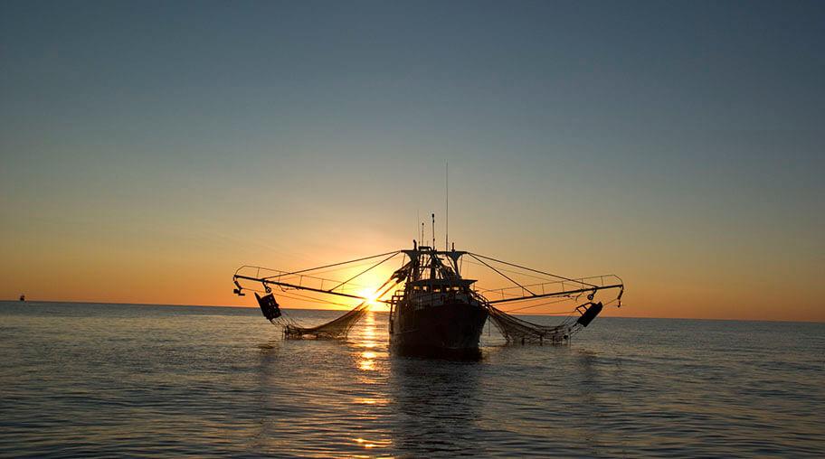 Exmouth Gulf prawn trawler Credit MG Kailis