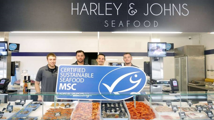 Harley and Johns MSC blue fish tick