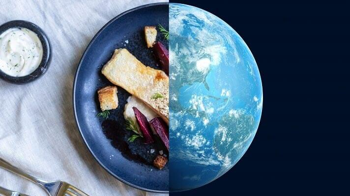 Image showing half plate of salmon on the left and half globe on the riight