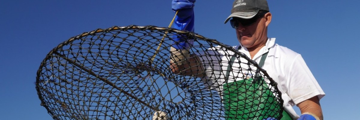 A fisherman holding a large net in front of a blue sky.