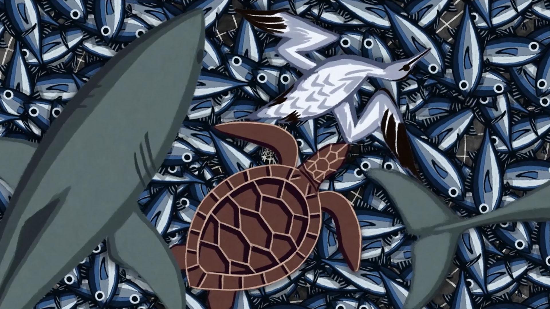 Bycatch in net