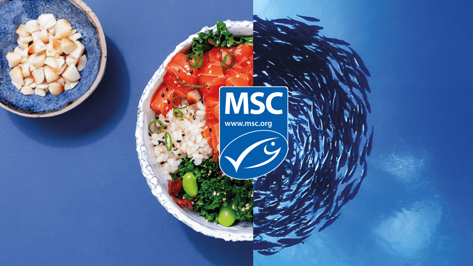 World Oceans Day Marine Stewardship Council
