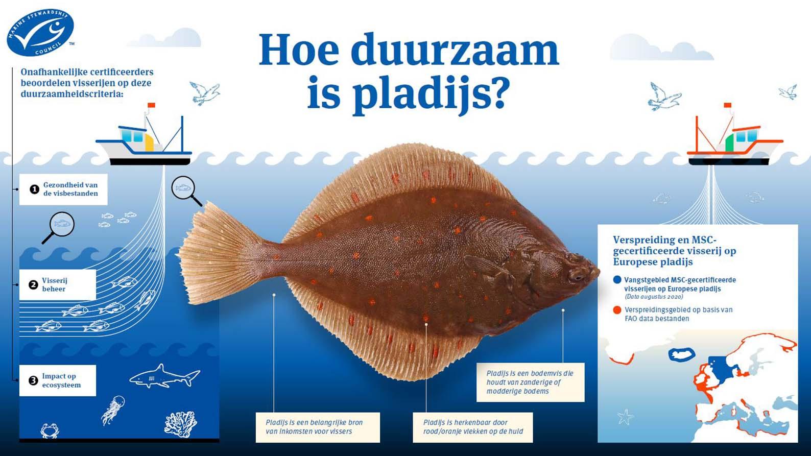 Duurzame pladijs