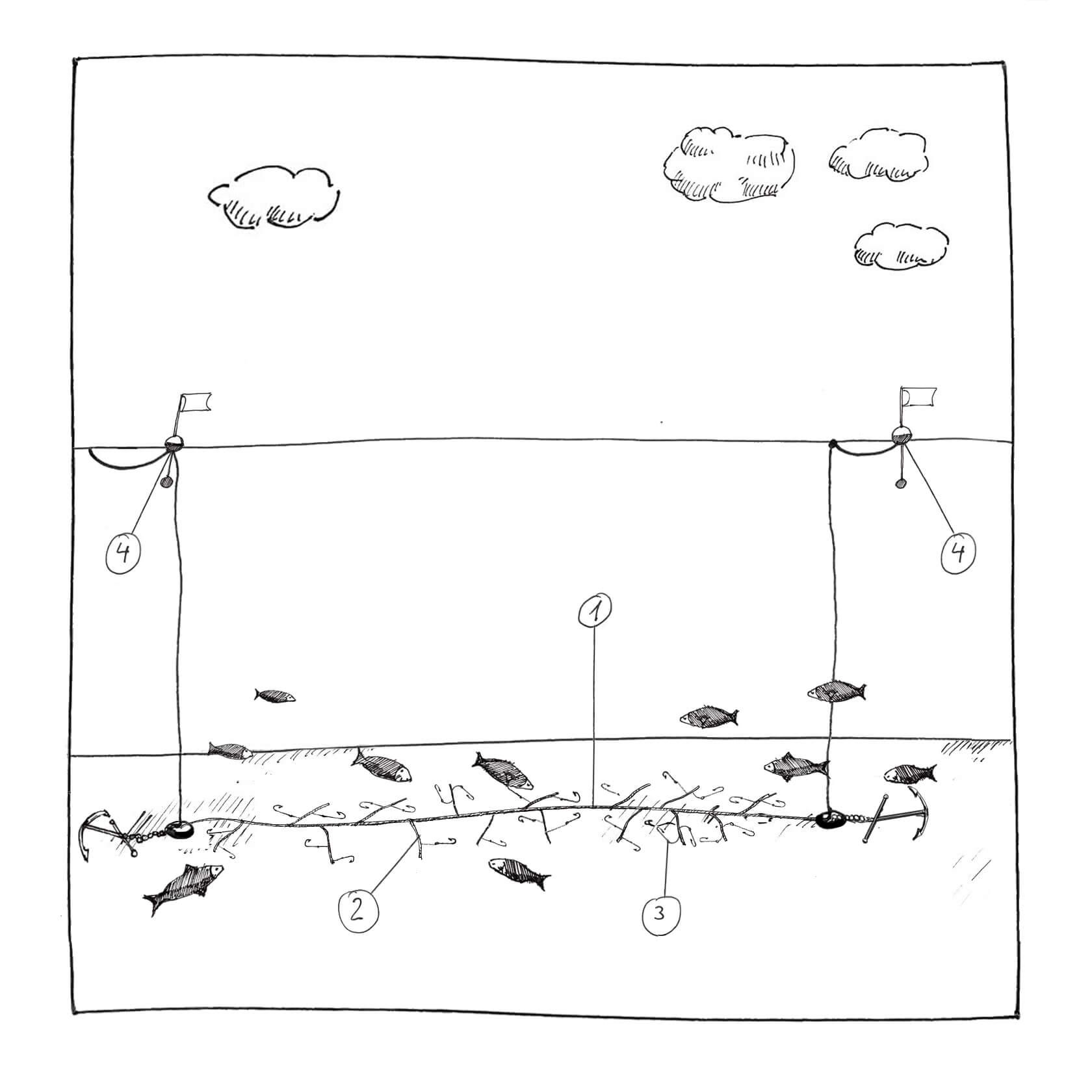 Fangmethode im MSC Fanggerätekatalog - Langleine