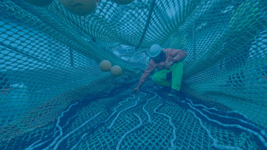 Deckhand-Alters-Fishing-Net-scr