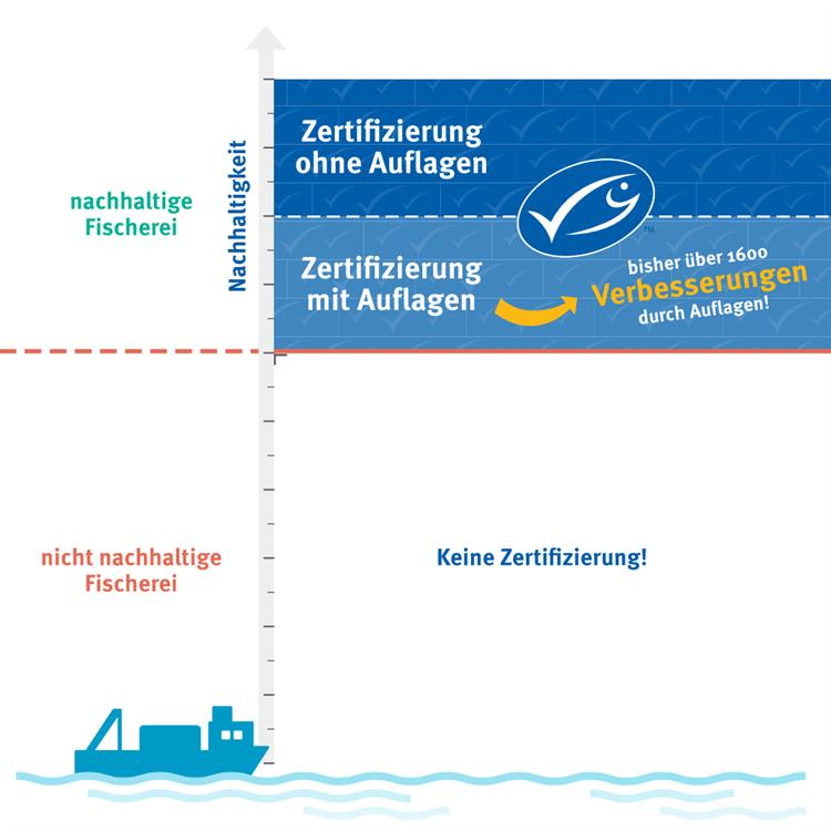 Infografik Auflagenmechanismus bei der MSC-Berwertung