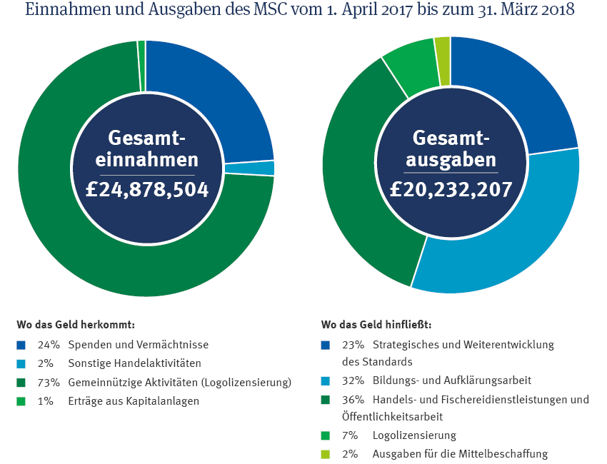MSC-finanzen-2018