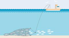 Illustration wie ein Trawler mit Grundschleppnetz fischt