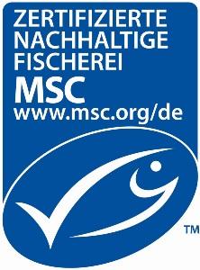 MSC Logo - was macht der MSC