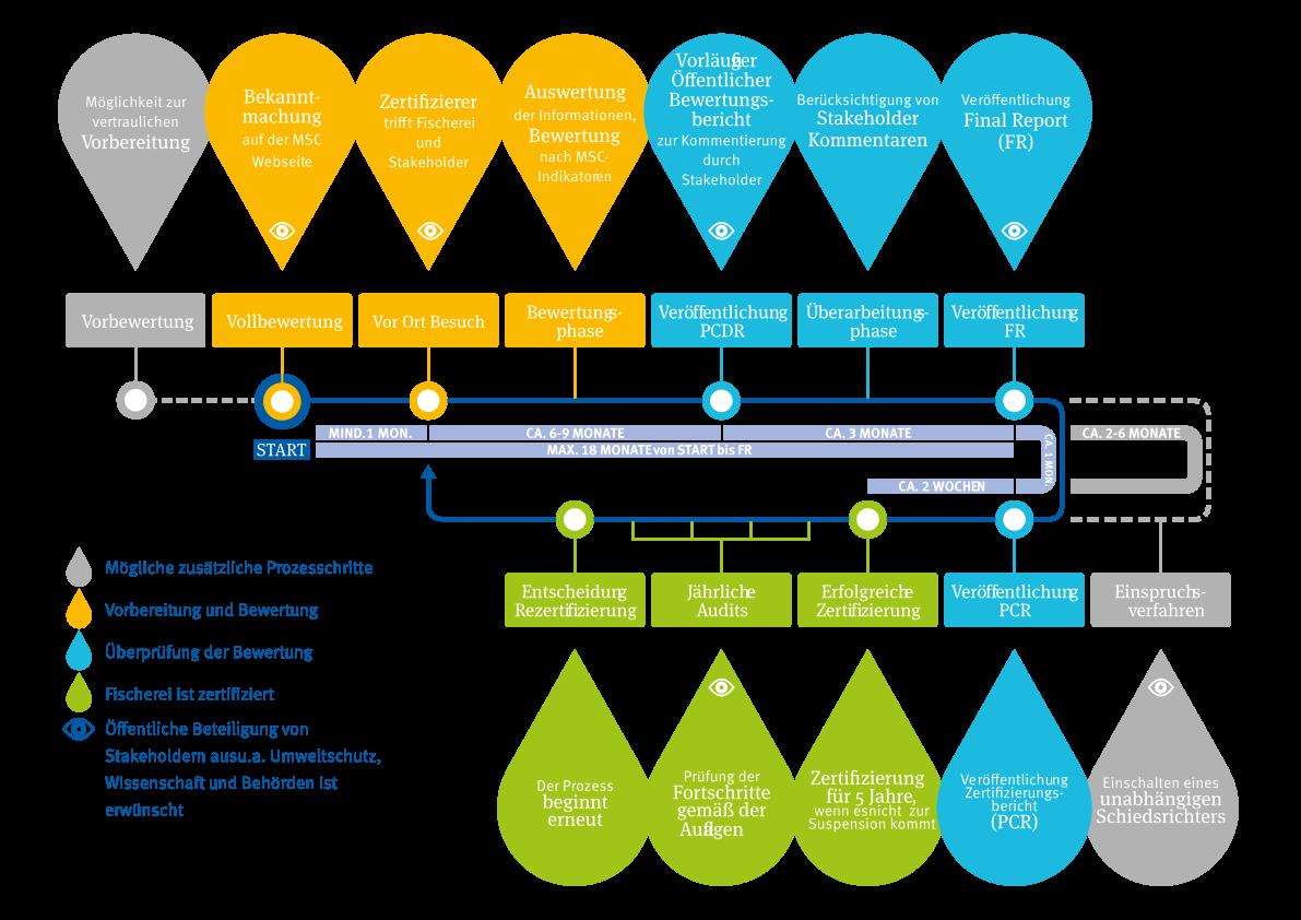 vereinfachte Übersicht des MSC-Fischerei-Bewertungsprozesses