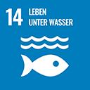 Ziel 14: Ozeane, Meere Ozeane, Meere und Meeresressourcen im Sinne einer nachhaltigen Entwicklung erhalten und nachhaltig nutzen