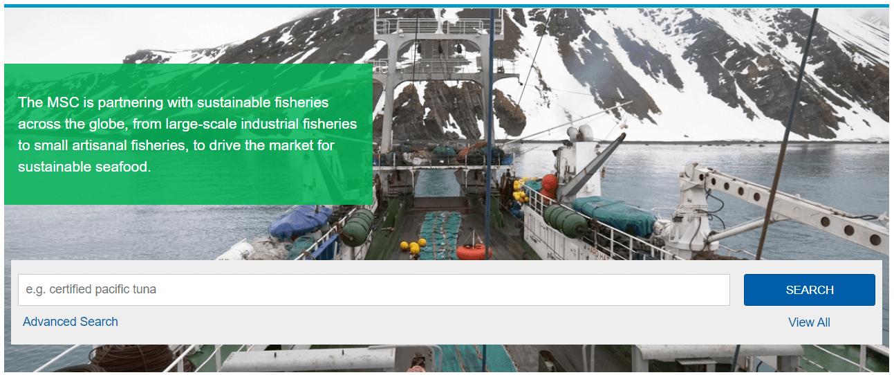 Header-Übersicht der MSC Fischereisuche (Track a Fishery)