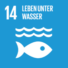 Nachhaltiges Entwicklungsziel 14 - Leben unter Wasser