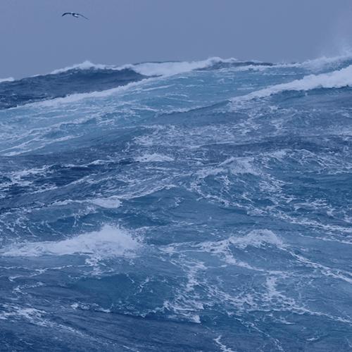 ocean-spotlight