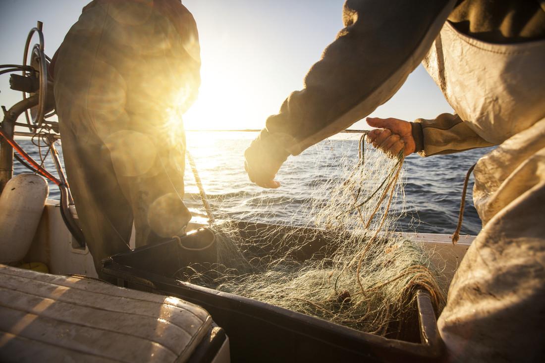 Rybacy przy pracy