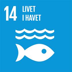 Blå bakgrund och vit text: 14 Livet i havet