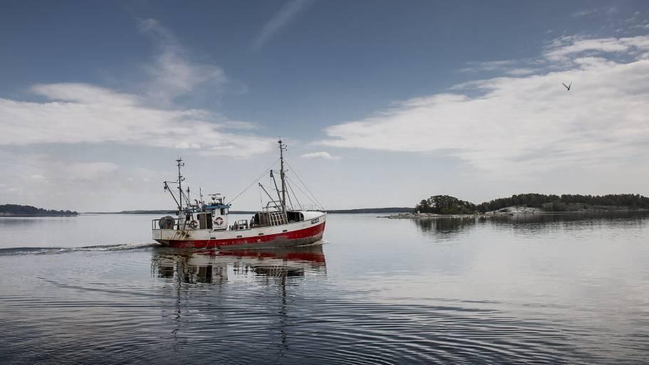 Silakan kalastus Suomessa