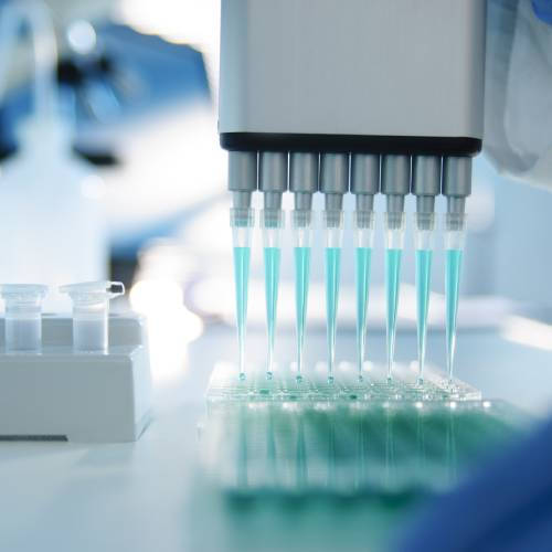 Tests ADN