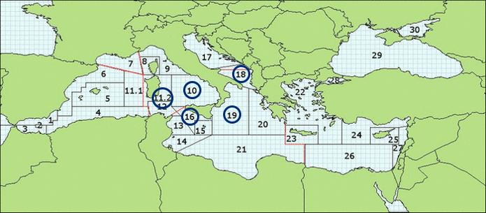 Mappatura aree progetto