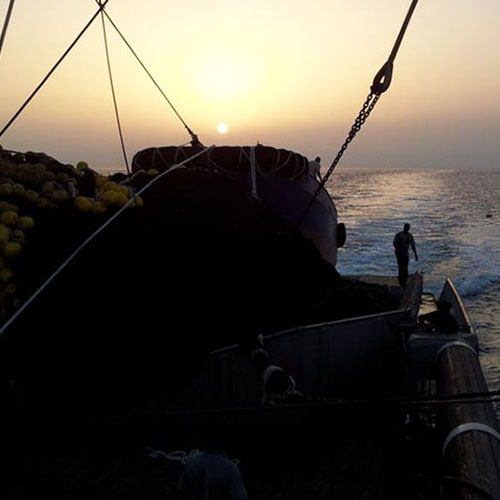 echebastar-fishery-ship-with-sunset_spotlight