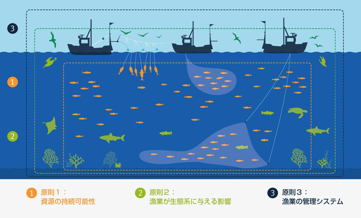 MSC漁業規格の3原則