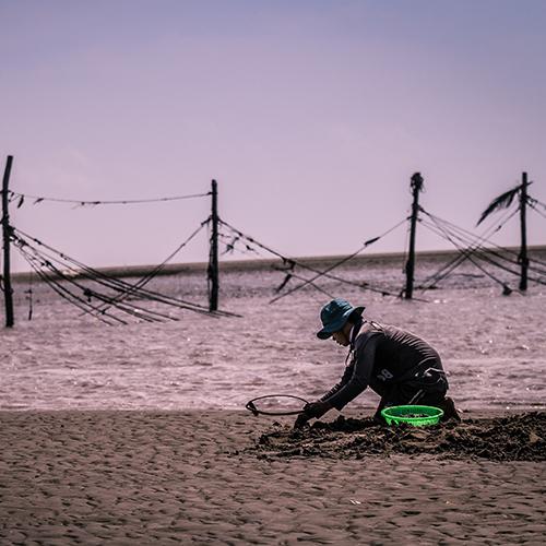 Pêcheur (devant, à droite) agenouillé sur le sable pour ramasser des palourdes, avec une vue sur l'océan derrière lui.