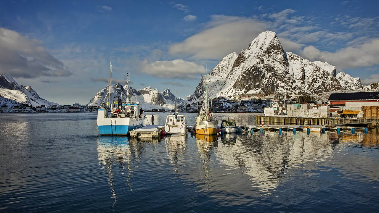 Cod fishing boats docked in Lofoten, Norway