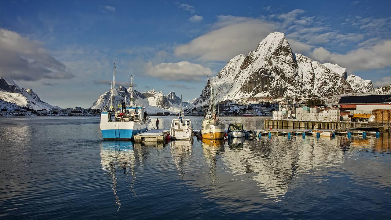 Cod fishing boats docked in Lofoten, Norway
