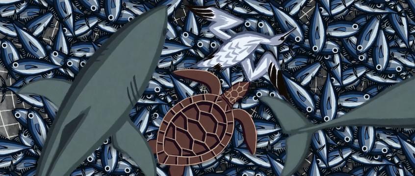 Bycatch in a fishing net