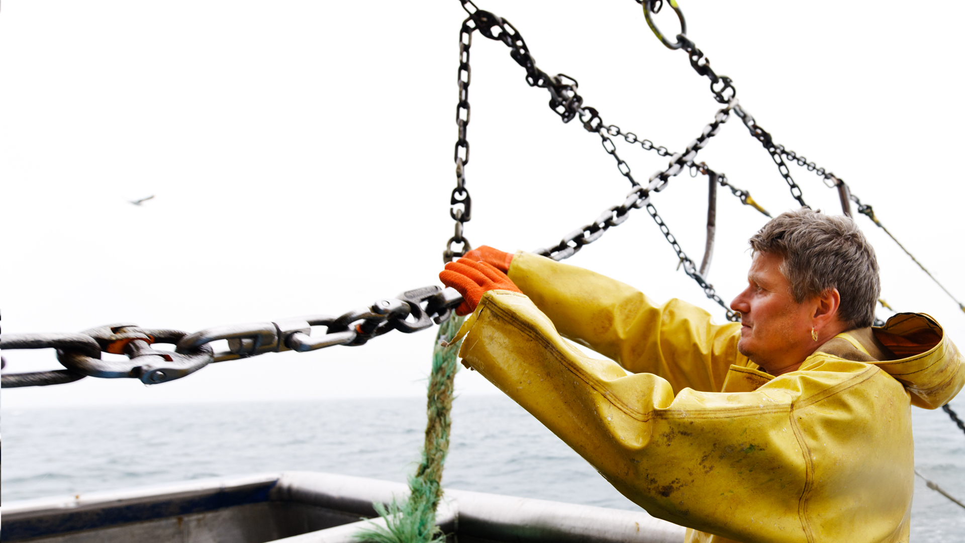 Fishery Certification Guide Marine Stewardship Council
