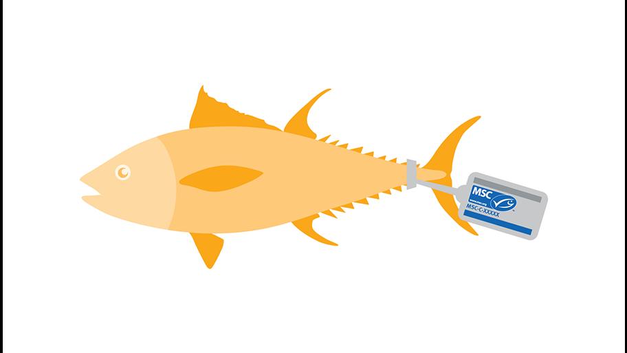 erbjudande kod för fisk dating