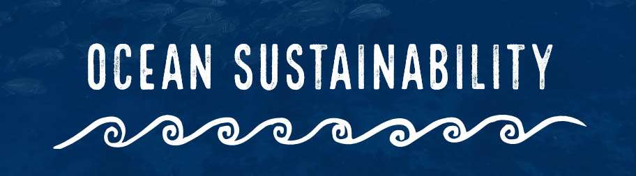 Ocean-sustainability-PowerPoint lesson title page
