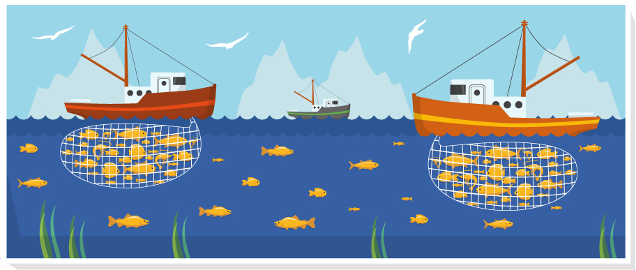 Illustration showing two independent groups targeting the same fish stock