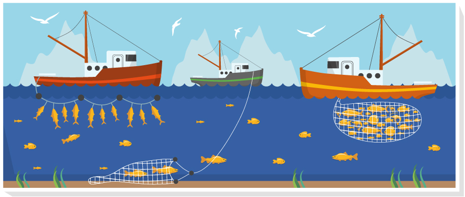 Illustration showing vessels catching different fish species with different fishing gear