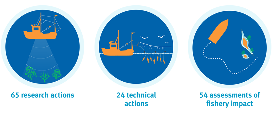 Icon illustrations showing research actions, technical actions and assessments of fishery impact