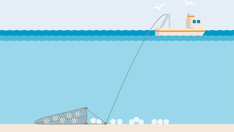 Dredging fishing gear illustration