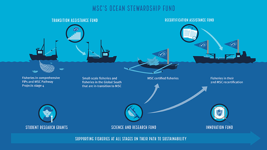 Infographic with five sub-funds of Ocean Stewardship Fund