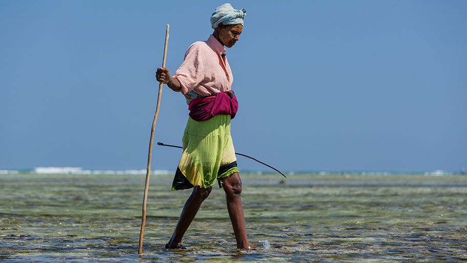 Woman fisher walking in shallow water with a stick with blue sky in the background.