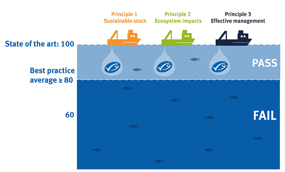 Graphic showing MSC Fisheries Standard scoring average: a fishery must score an average score of 80 across all performance indicators under each of three principles