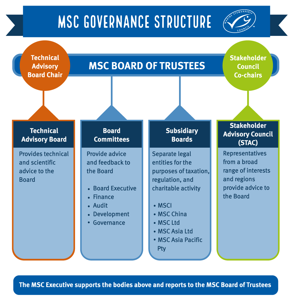 Chart of MSC Governance Structure