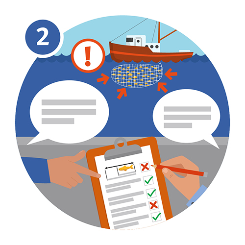 Illustration of a boat surrounded by fish and an exclaimation mark and hands pointing to a clipboard