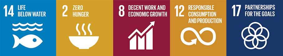 Icons for five United Nations Sustainable Development Goals: Life Below Water, Zero Hunger, Decent Work, Responsible Consumption and Partnership for the goals