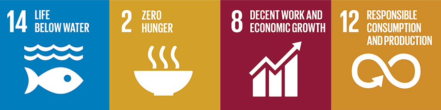 Icons for United Nations Sustainable Development goals 14 - Life below Water, 2 - Zero Hunger, 8 - Decent work, and 12 - Responsible consumption