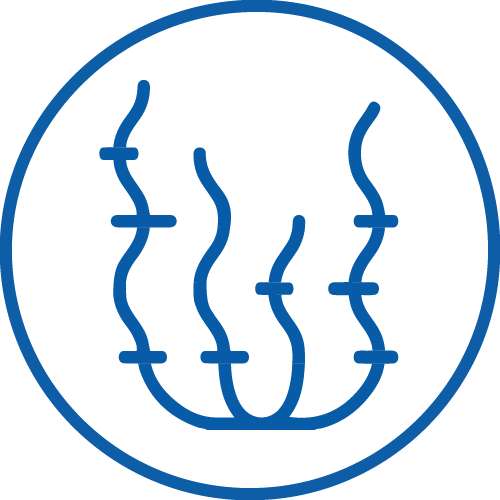 icon for ASC-MSC Seaweed Standard