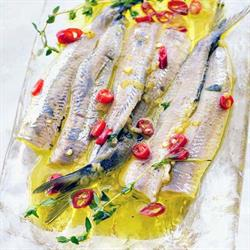 Sardines on a plate with red chillies and yellow sauce