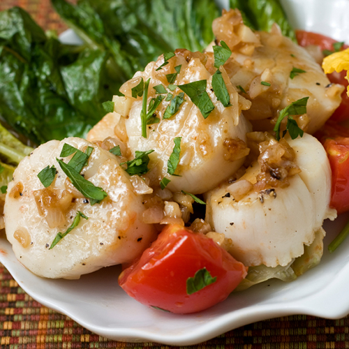 Creamy scallops and shallots