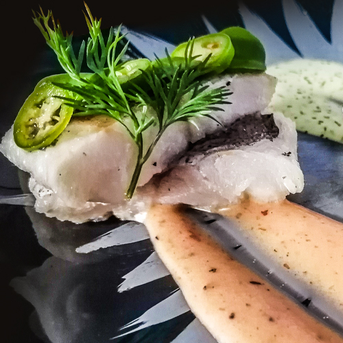 Dill and Chilli Hake with Spekboom