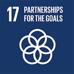 SDG 17 Partnerships for the goals icon