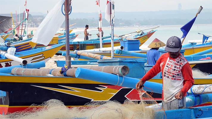 Fisherman gathering net among colourful boats